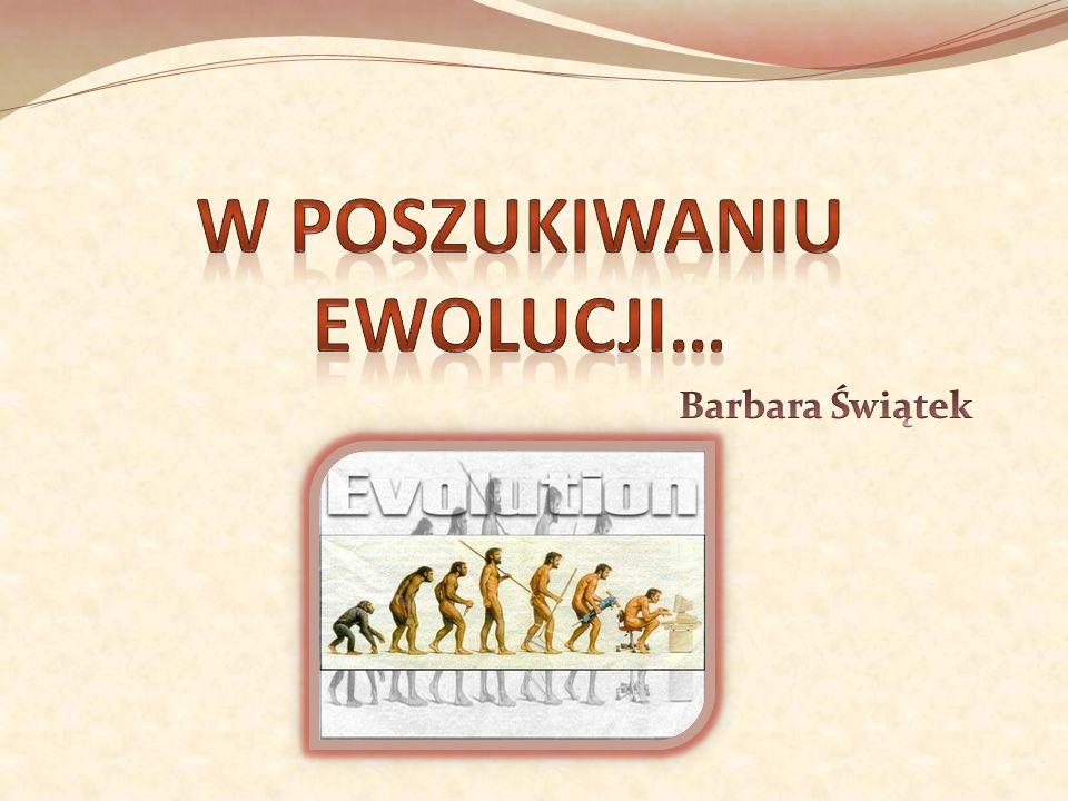 W poszukiwaniu ewolucji…