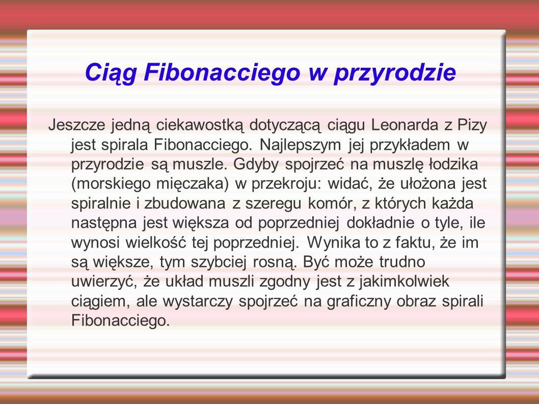 Ciąg Fibonacciego w przyrodzie
