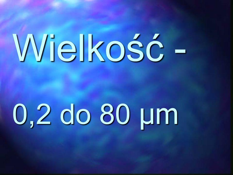 Wielkość - 0,2 do 80 μm