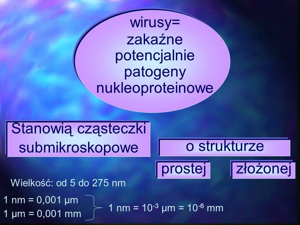 wirusy= zakaźne potencjalnie patogeny nukleoproteinowe