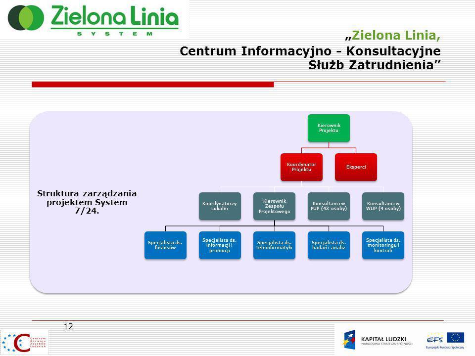Struktura zarządzania projektem System 7/24.