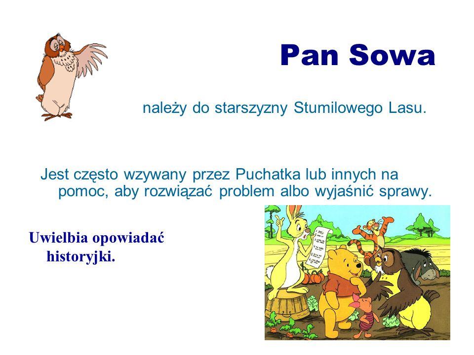 Pan Sowa należy do starszyzny Stumilowego Lasu.