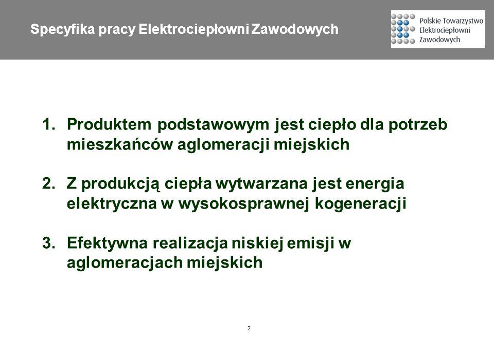 Specyfika pracy Elektrociepłowni Zawodowych