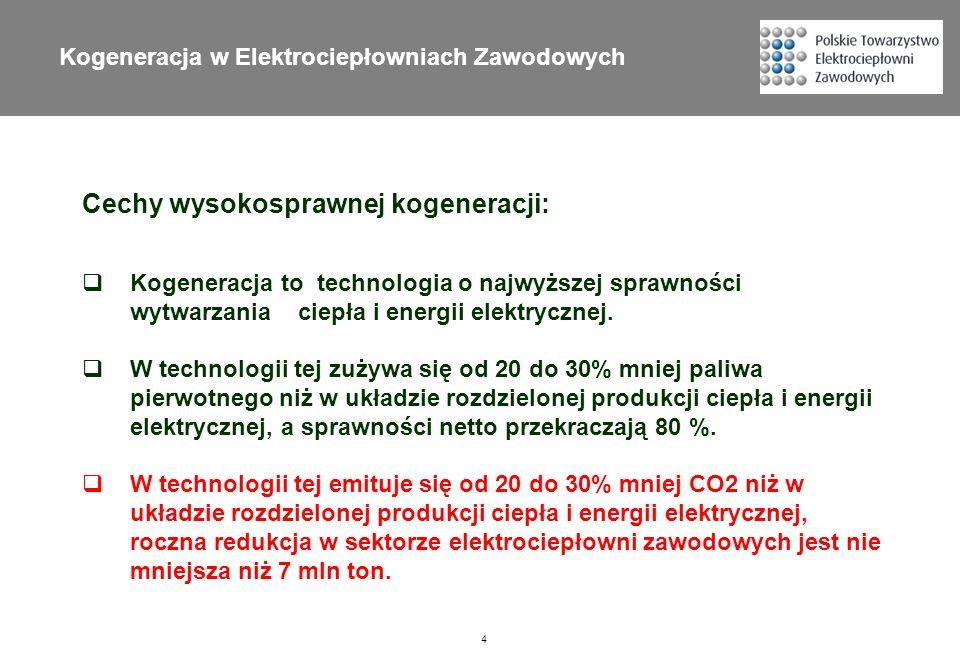 Kogeneracja w Elektrociepłowniach Zawodowych