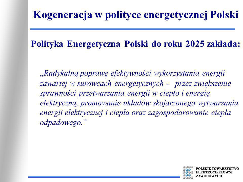 Kogeneracja w polityce energetycznej Polski