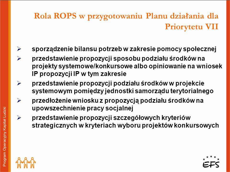 Rola ROPS w przygotowaniu Planu działania dla Priorytetu VII