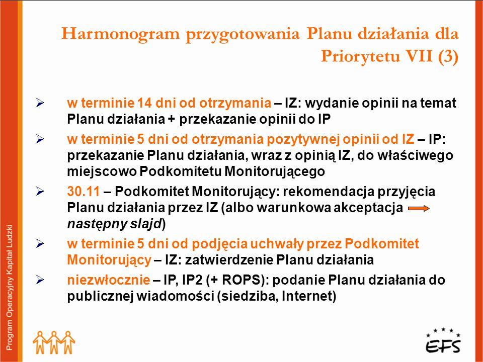 Harmonogram przygotowania Planu działania dla Priorytetu VII (3)