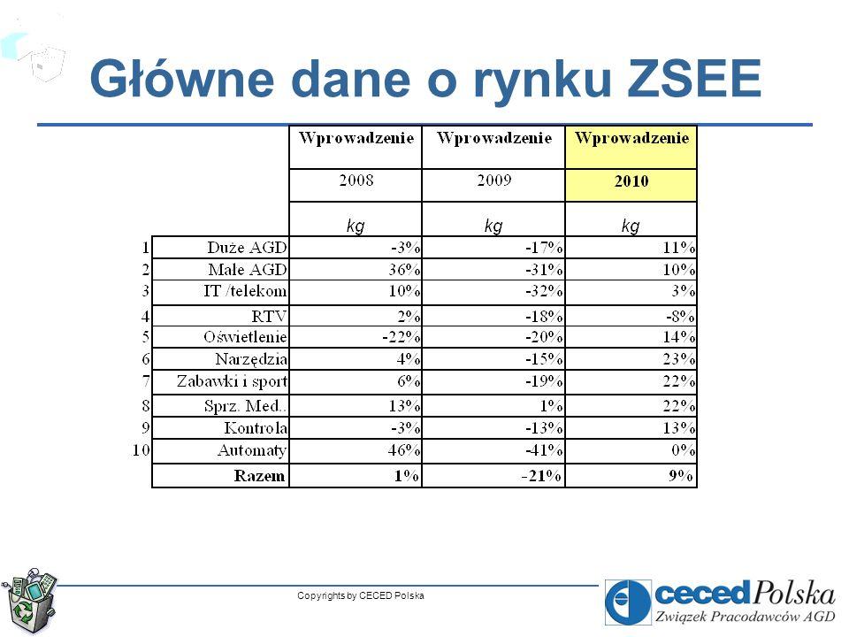 Główne dane o rynku ZSEE