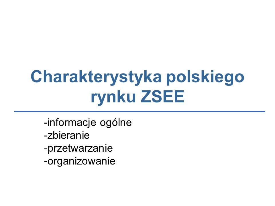 Charakterystyka polskiego rynku ZSEE