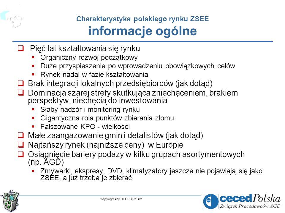Charakterystyka polskiego rynku ZSEE informacje ogólne