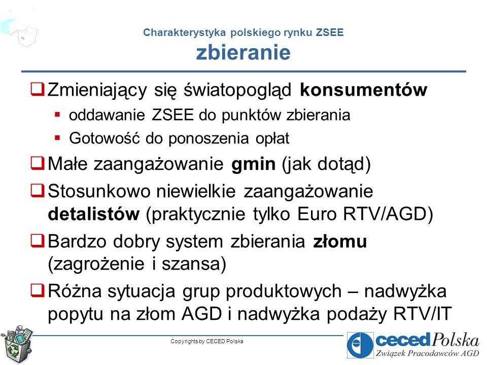Charakterystyka polskiego rynku ZSEE zbieranie