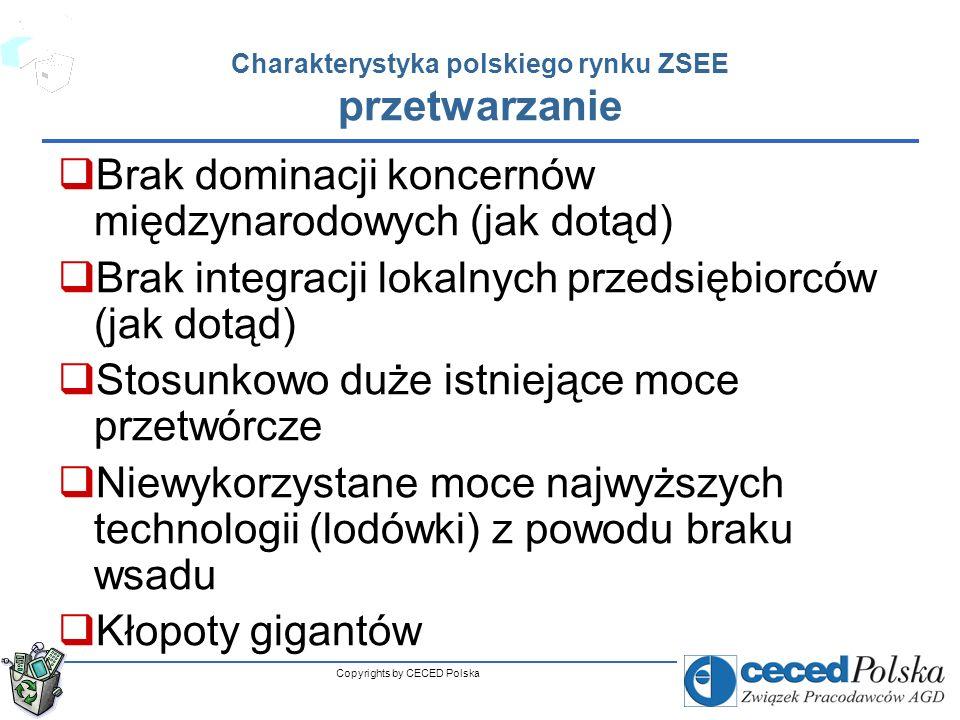 Charakterystyka polskiego rynku ZSEE przetwarzanie