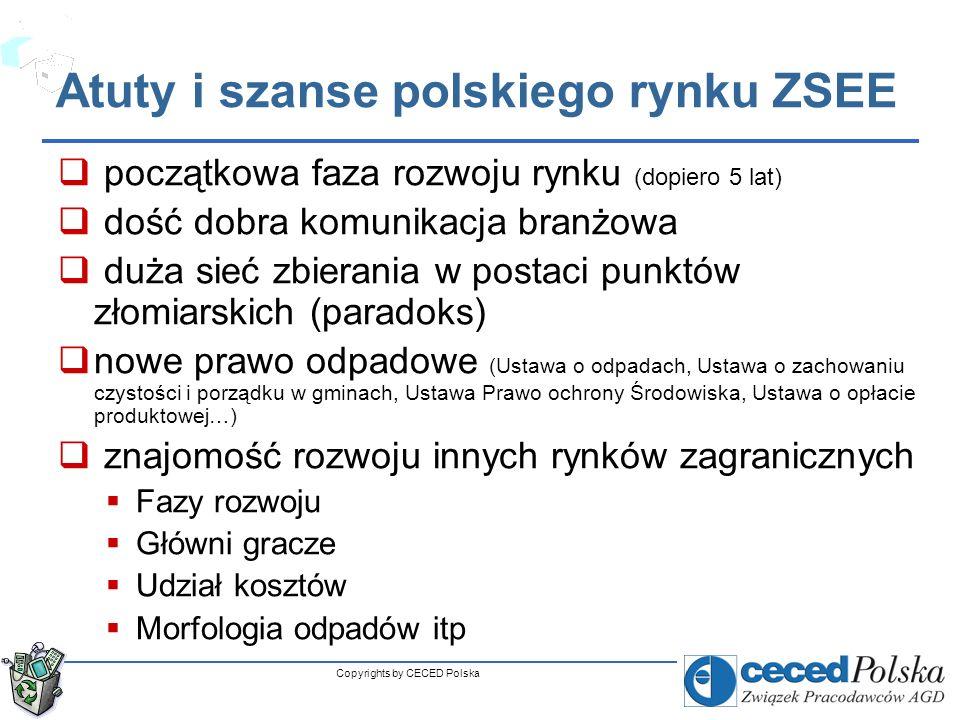 Atuty i szanse polskiego rynku ZSEE