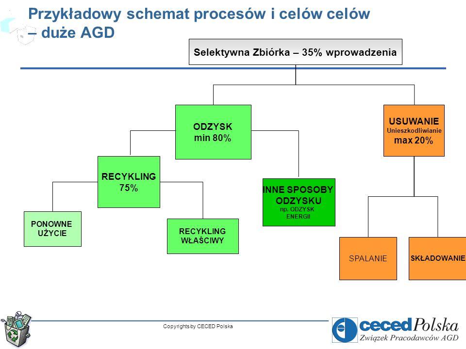 Przykładowy schemat procesów i celów celów – duże AGD