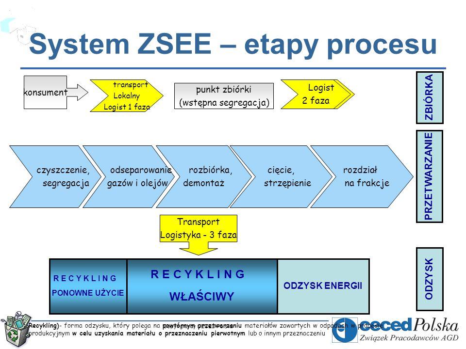 System ZSEE – etapy procesu