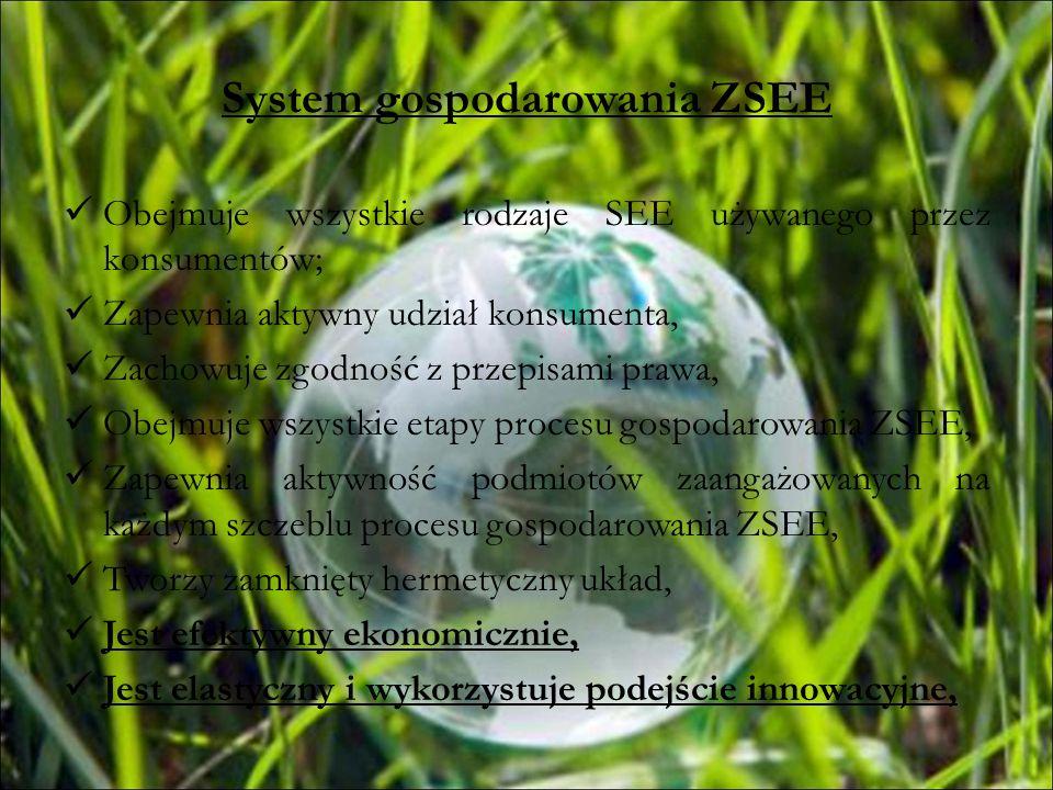System gospodarowania ZSEE