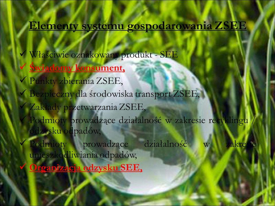 Elementy systemu gospodarowania ZSEE