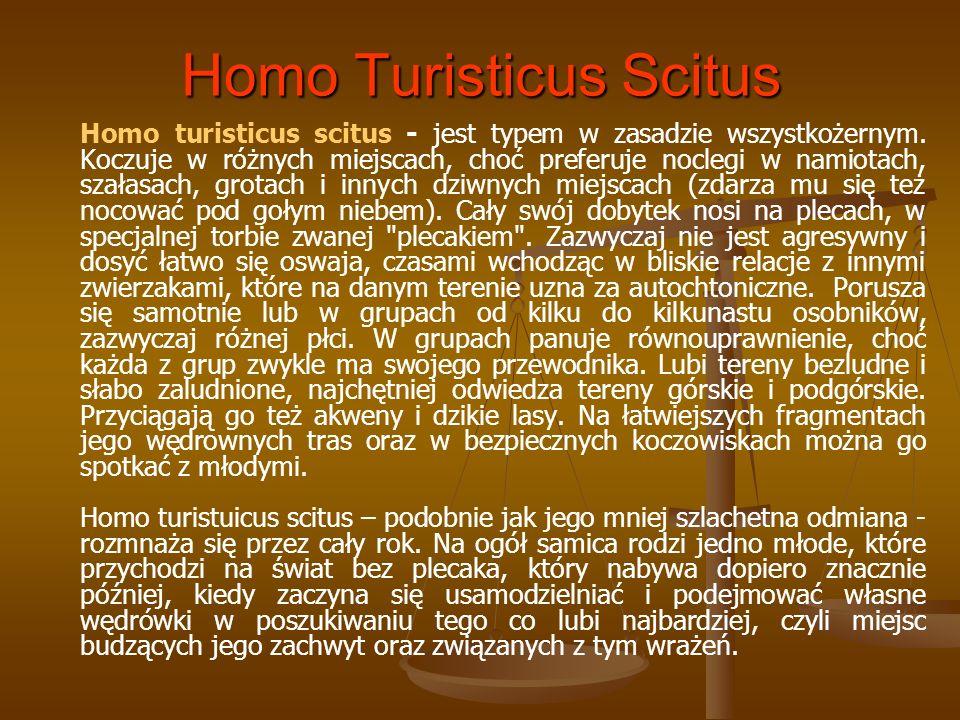 Homo Turisticus Scitus