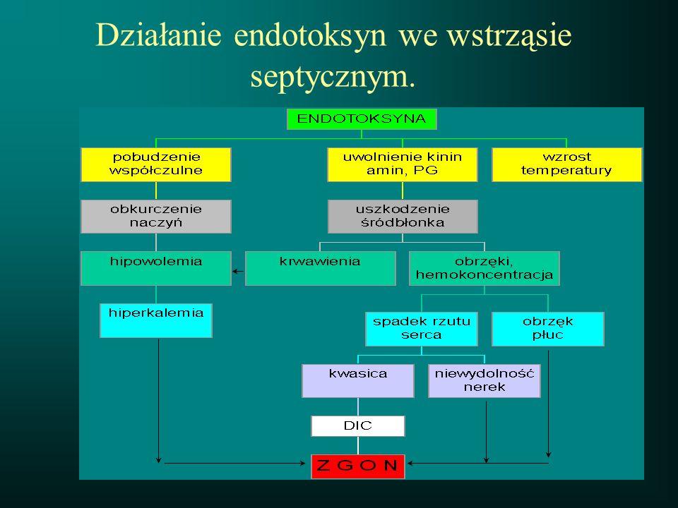 Działanie endotoksyn we wstrząsie septycznym.