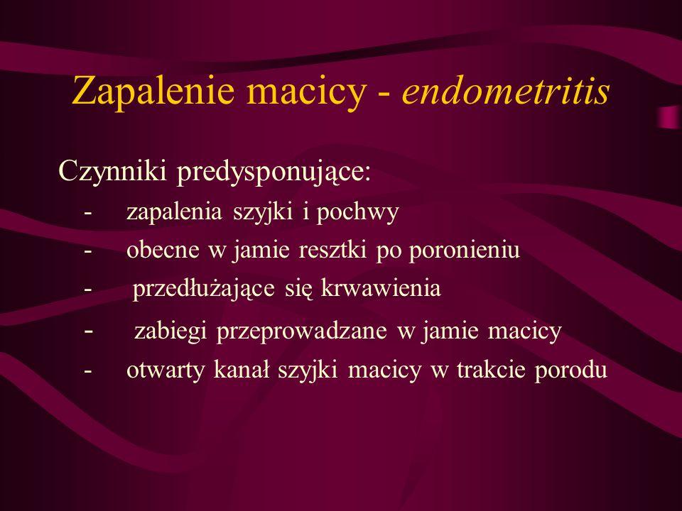 Zapalenie macicy - endometritis