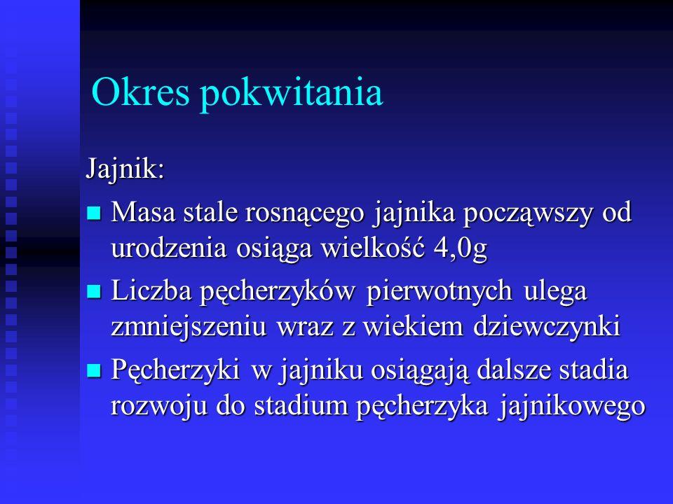 Okres pokwitania Jajnik:
