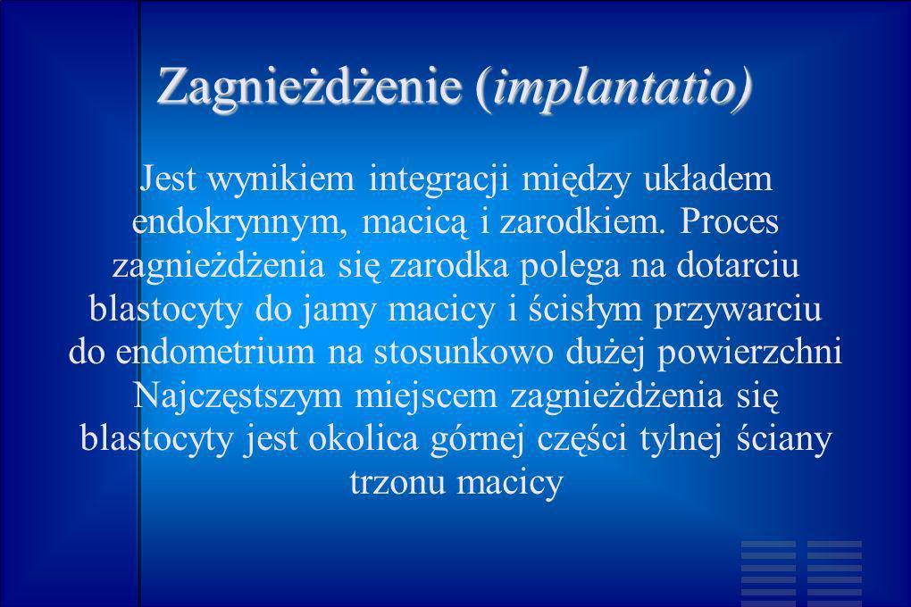 Zagnieżdżenie (implantatio)