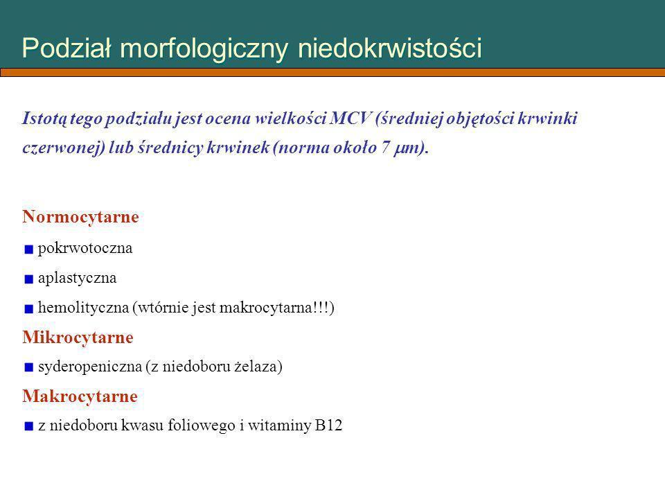 Podział morfologiczny niedokrwistości