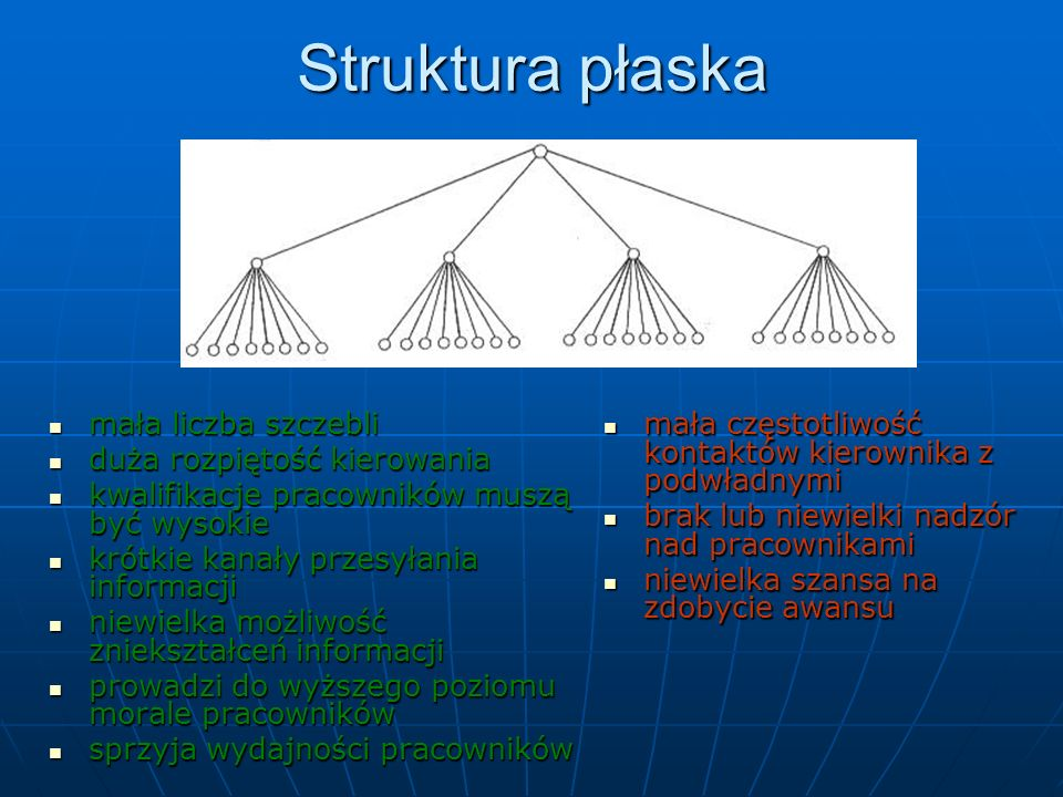 Struktura płaska mała liczba szczebli duża rozpiętość kierowania