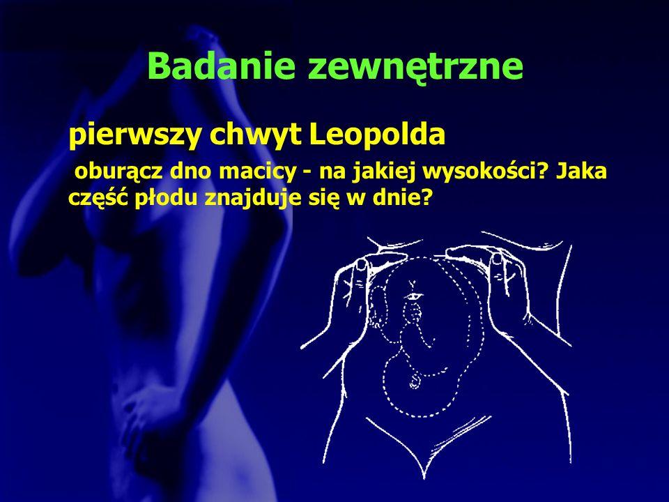 Badanie zewnętrzne pierwszy chwyt Leopolda
