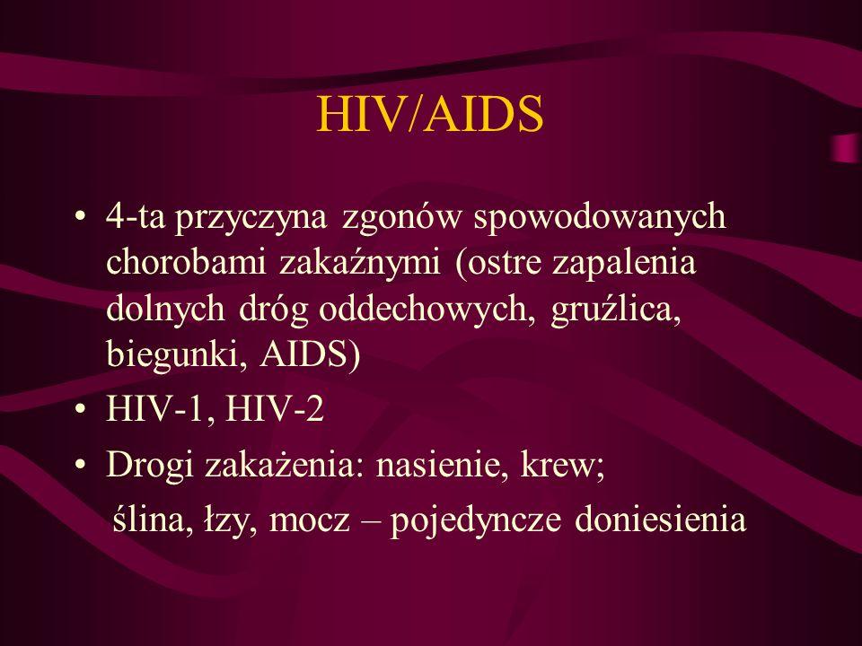 HIV/AIDS 4-ta przyczyna zgonów spowodowanych chorobami zakaźnymi (ostre zapalenia dolnych dróg oddechowych, gruźlica, biegunki, AIDS)