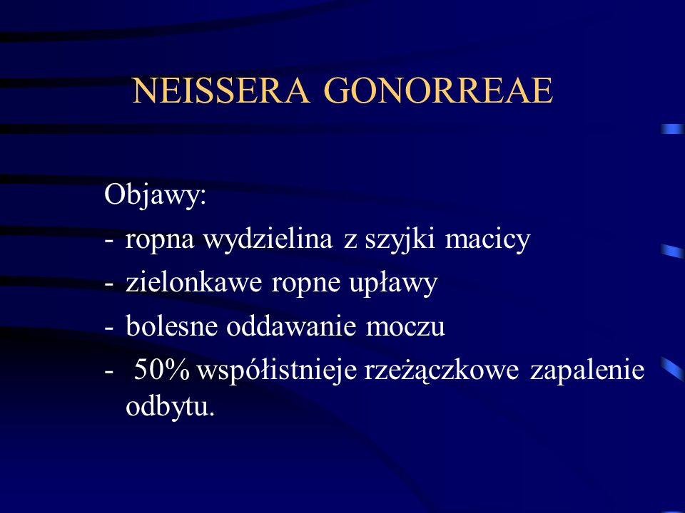 NEISSERA GONORREAE Objawy: ropna wydzielina z szyjki macicy