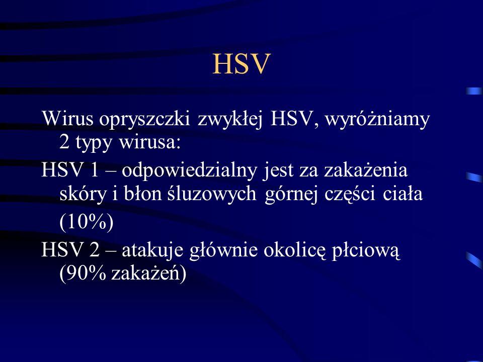 HSV Wirus opryszczki zwykłej HSV, wyróżniamy 2 typy wirusa: