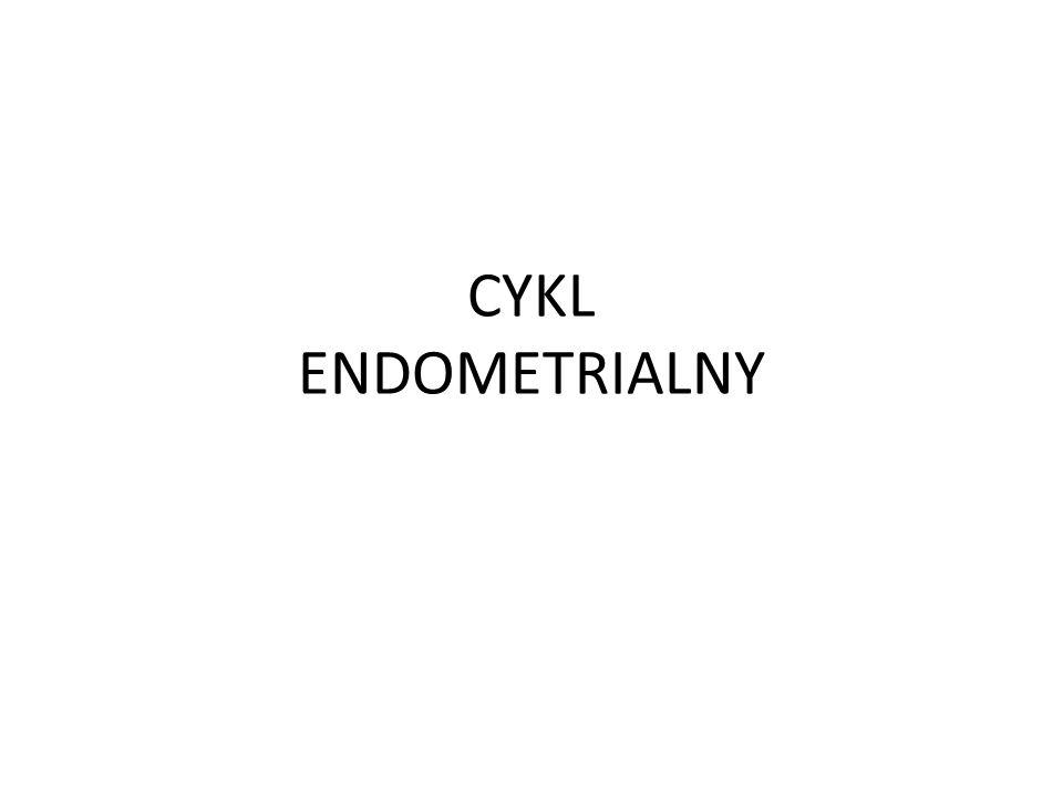 CYKL ENDOMETRIALNY