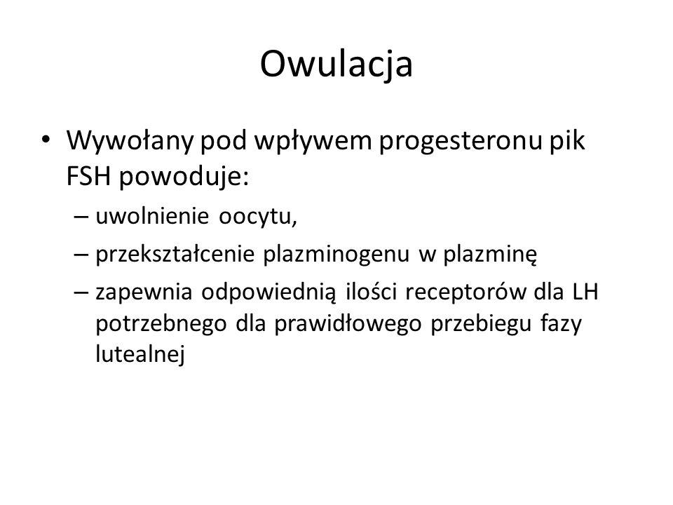 Owulacja Wywołany pod wpływem progesteronu pik FSH powoduje: