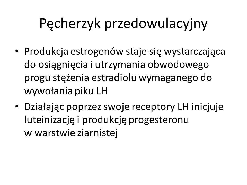 Pęcherzyk przedowulacyjny