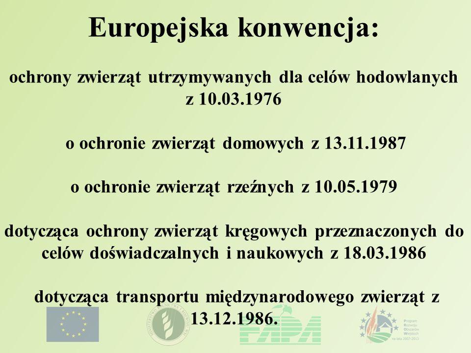 Europejska konwencja: