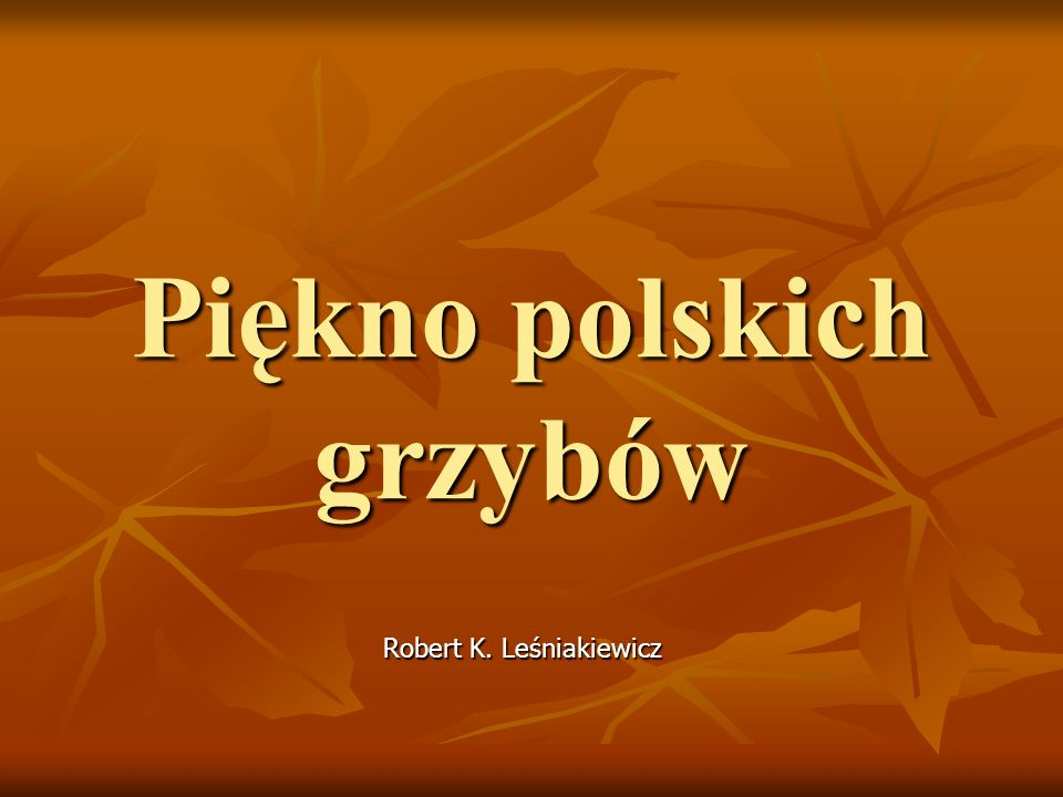 Piękno polskich grzybów