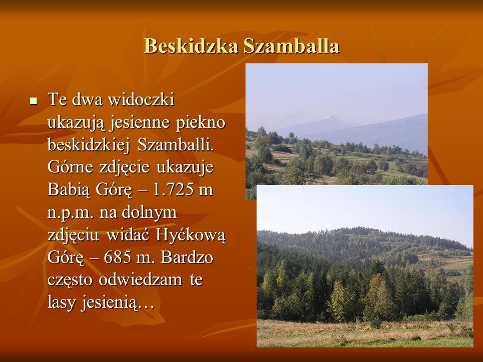Beskidzka Szamballa