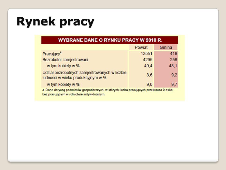 Rynek pracy STRATEGIA ROZWOJU SPOŁECZNO - GOSPODARCZEGO GMINY ŁAPANÓW NA LATA 2010 - 2020