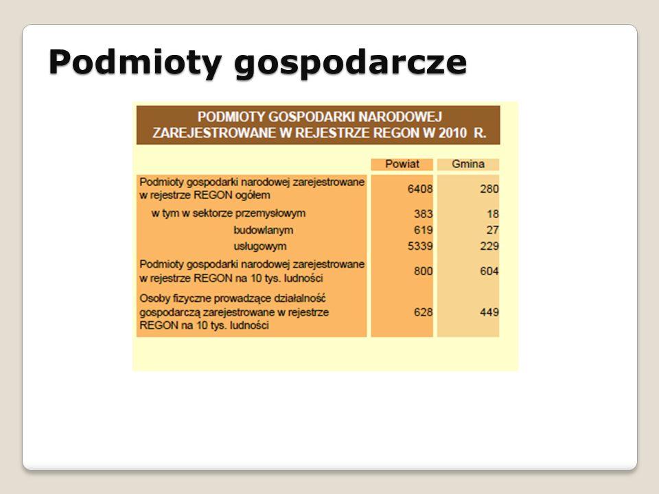 Podmioty gospodarcze STRATEGIA ROZWOJU SPOŁECZNO - GOSPODARCZEGO GMINY ŁAPANÓW NA LATA 2010 - 2020