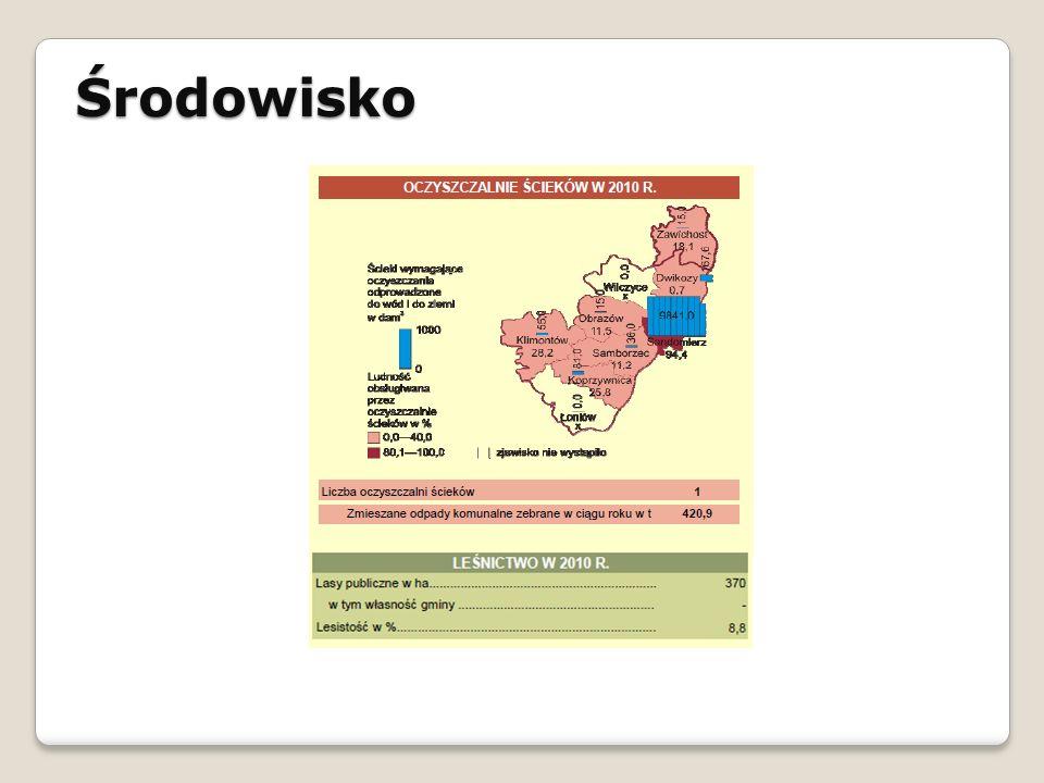 Środowisko STRATEGIA ROZWOJU SPOŁECZNO - GOSPODARCZEGO GMINY ŁAPANÓW NA LATA 2010 - 2020