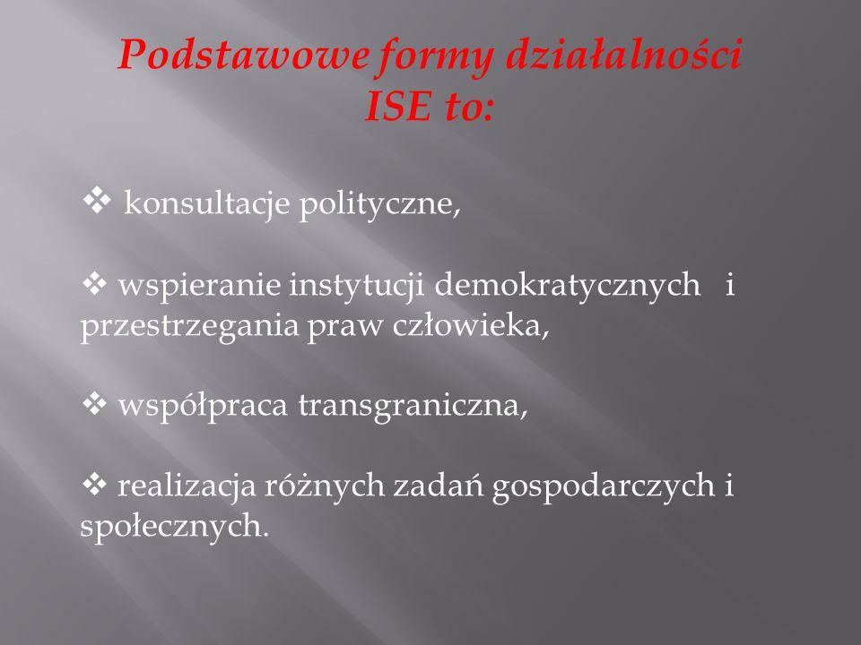 Podstawowe formy działalności ISE to: