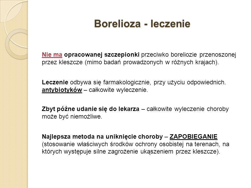 Borelioza - leczenie
