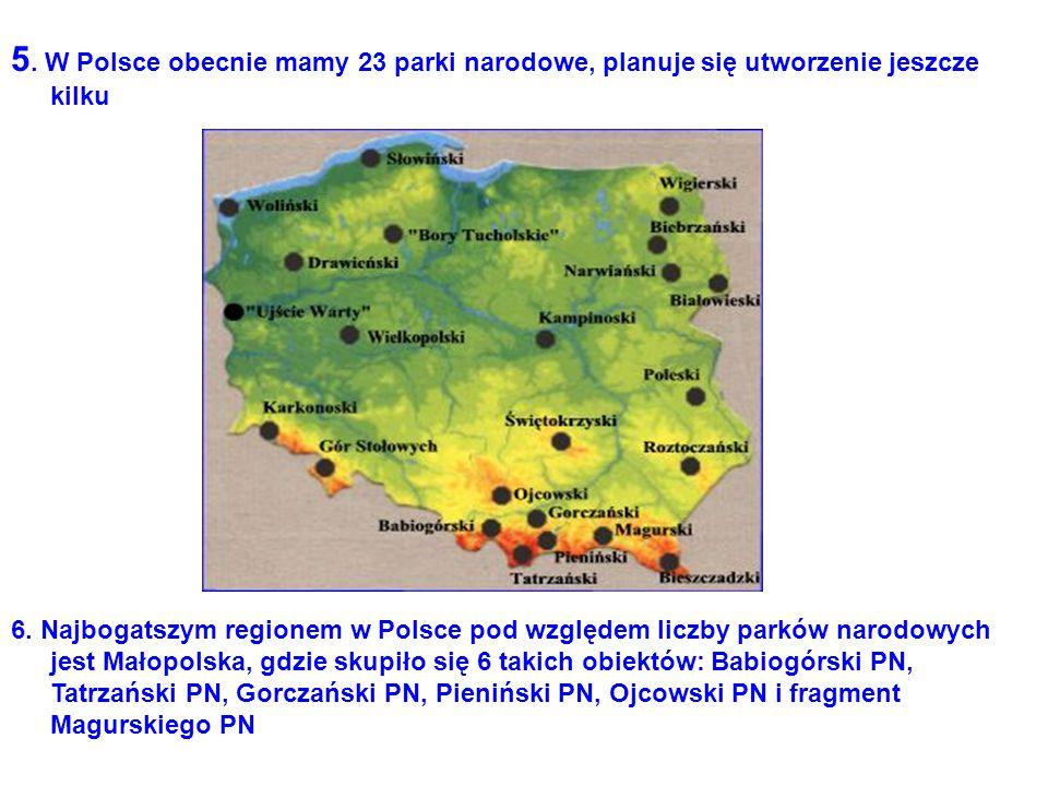 5. W Polsce obecnie mamy 23 parki narodowe, planuje się utworzenie jeszcze kilku