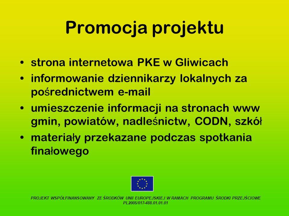 Promocja projektu strona internetowa PKE w Gliwicach