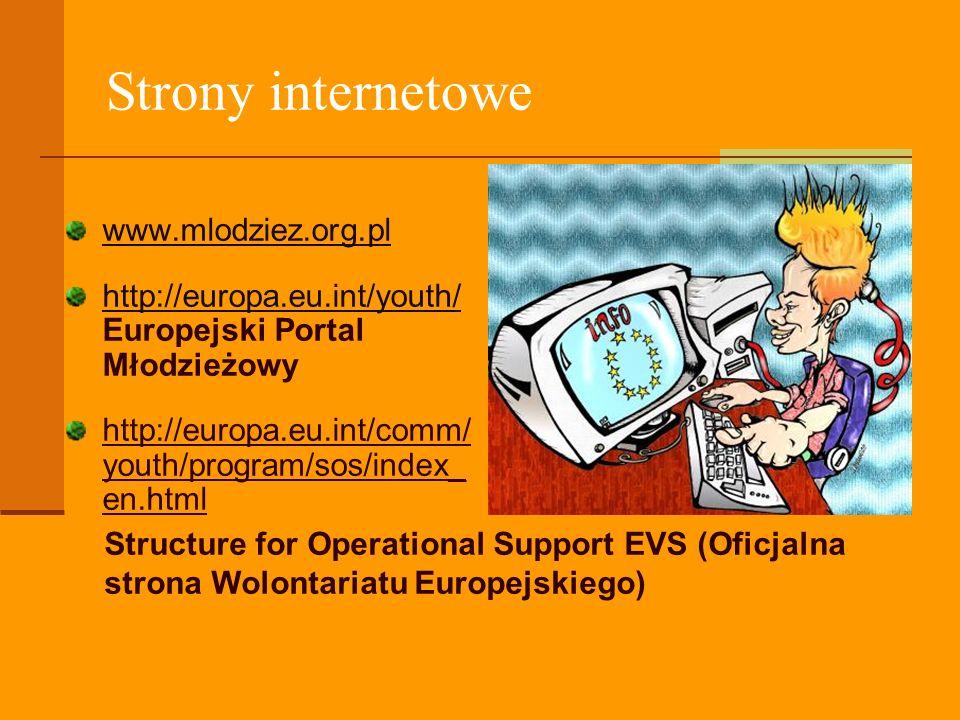 Strony internetowe www.mlodziez.org.pl