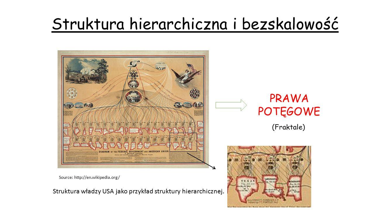 Struktura hierarchiczna i bezskalowość