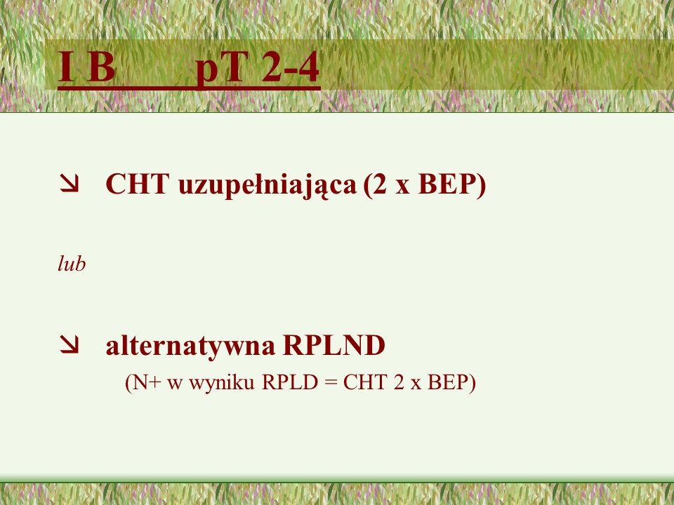 I B pT 2-4 CHT uzupełniająca (2 x BEP) alternatywna RPLND lub