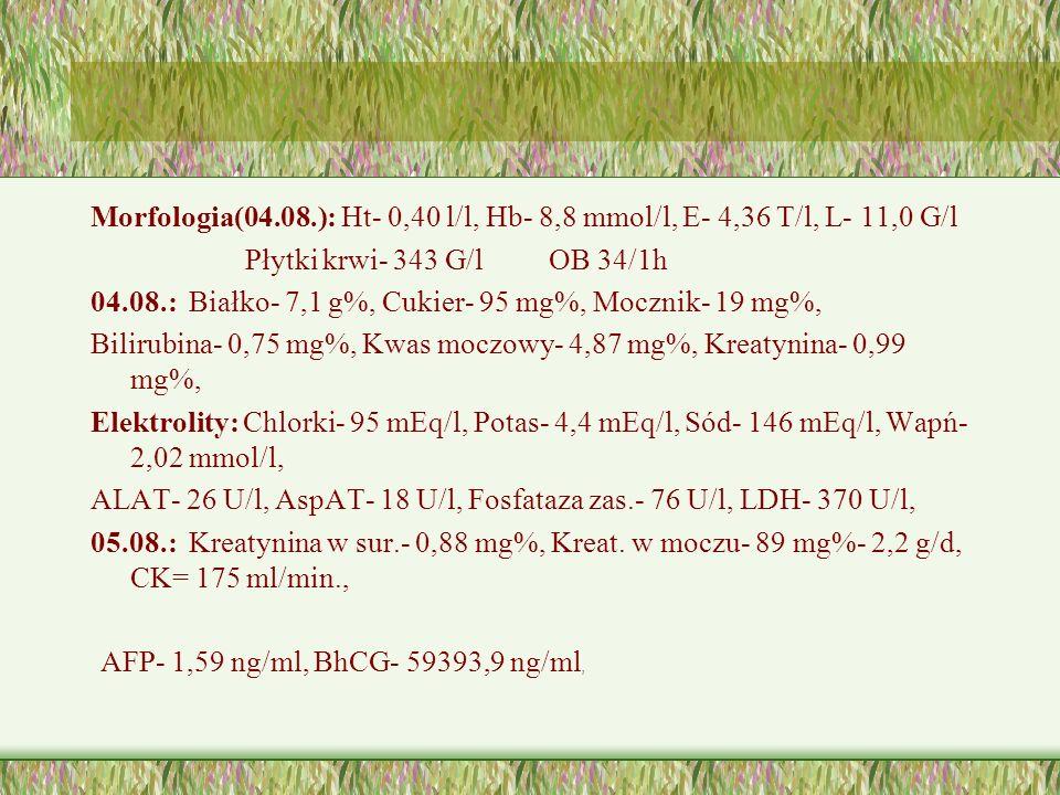 Morfologia(04.08.): Ht- 0,40 l/l, Hb- 8,8 mmol/l, E- 4,36 T/l, L- 11,0 G/l