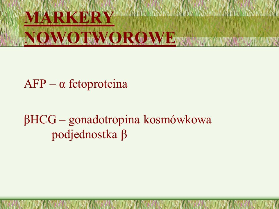MARKERY NOWOTWOROWE AFP – α fetoproteina